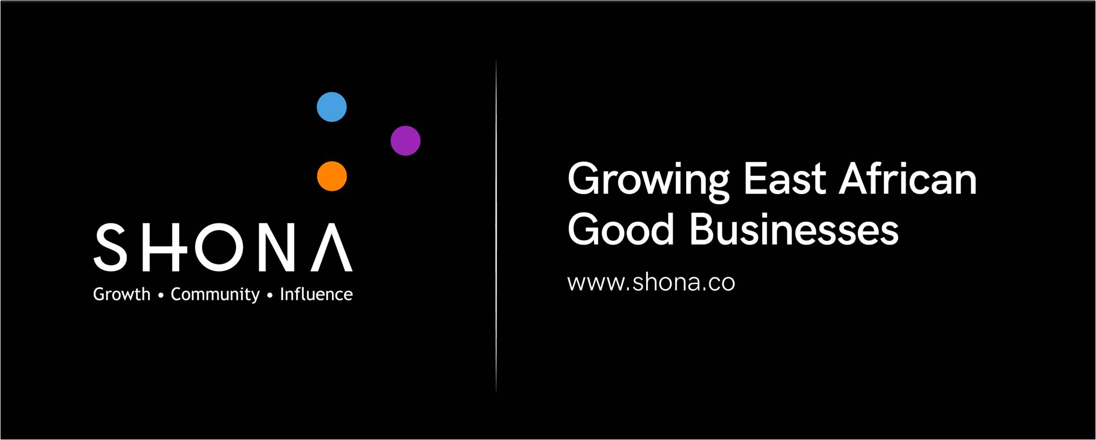 SHONA.co - SHONA Growth Program Movemeback African initiative cover image