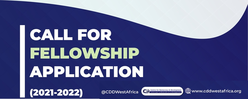 Centre for Democracy and Development - Fellowship Program Movemeback African initiative cover image