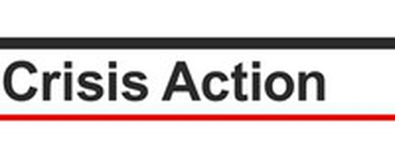 Crisis Action logo - Movemeback African opportunity
