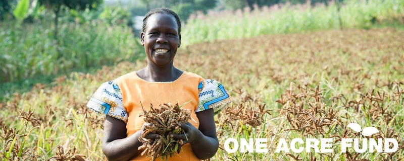 One Acre Fund - Program Strategy Lead Movemeback African opportunity cover image